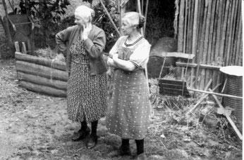 Vor hundert Jahren kümmerten sich die Hausfrauen auch um den Hühnerhof