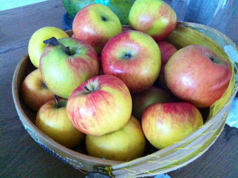 Äpfel als wichtiger Teil der Leberkur nach Anthony William