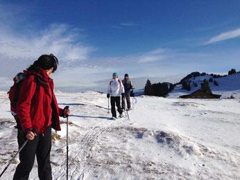 Stille Winterwelt in den Bergen des Kleinwalsertals