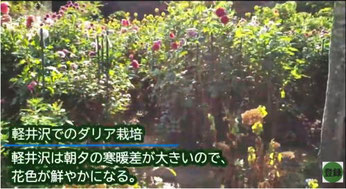花かごの持ち手をつける
