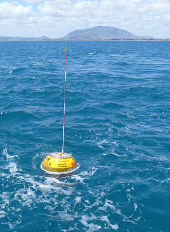 Wave rider buoy. CCBY State of Queensland (DSITIA) 2013