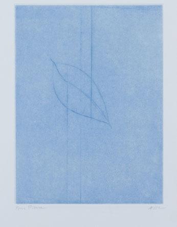 """Geneviève Asse, """"Printemps"""", 2004, aquatinte et pointe sèche, 38 x 28."""