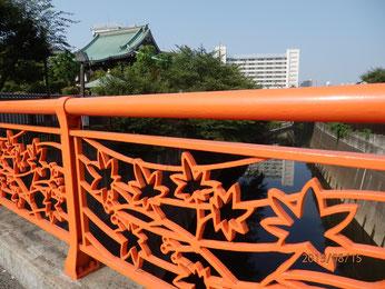 紅葉橋から金剛寺を見る