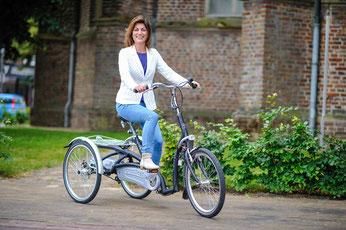 Van Raam Maxi Dreirad Elektro-Dreirad in Freiburg-Süd probefahren und kaufen