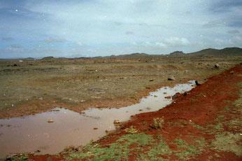 am nächsten Morgen, die Landschaft war öde und trocken
