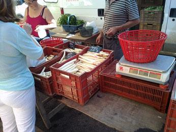 atelier cuisine : les courses au marché de la Charité sur Loire