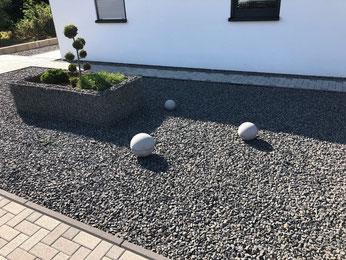 Amsel Drossel Fink Star Vögel im eigenen Garten NABU Düren