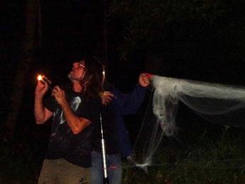 Auf der Suche nach Fledermäusen im Plaußiger Wäldchen. Foto: Mario Vormbaum