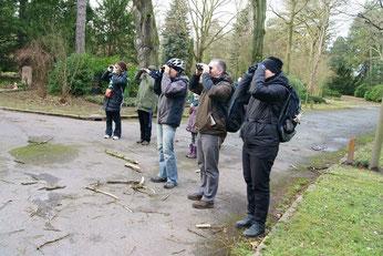 Zur Stunde der Wintervögel hatte der NABU Leipzig auch Führungen angeboten, beispielsweise über den Südfriedhof. Foto: René Sievert