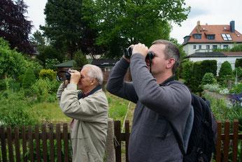 """Vogelbeobachtungen mit dem NABU Leipzig in der Kleingartenanlage """"Germanus"""". Foto: René Sievert"""