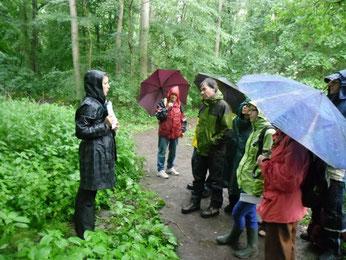 Umweltbildung bei jedem Wetter - Auwaldexkursion mit Franka Seidel. Foto: René Sievert