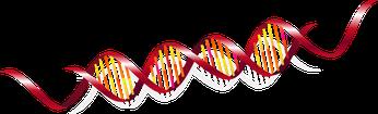 がん遺伝子のイメージイラスト