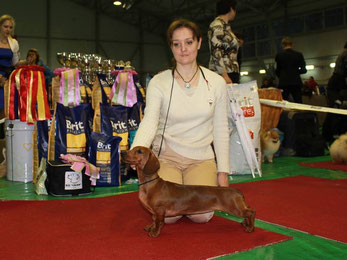 Almaznyi Laretz AVE MARIA - BIS Puppy - 3