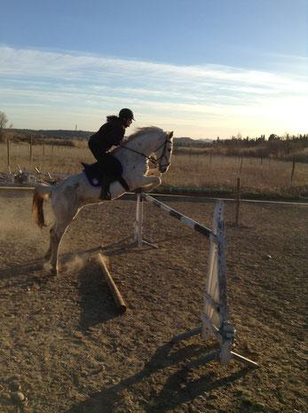 Cours de saut galop 7