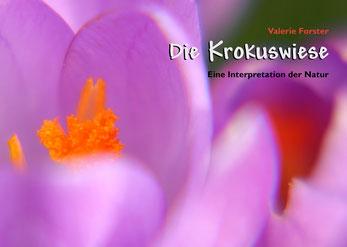 Valerie Forster, Buch, Books on Demand, Cover, Die Krokuswiese