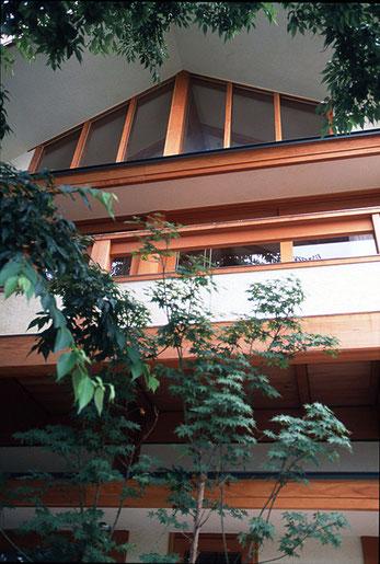 無垢の米松の太い柱と、漆喰の壁に囲まれ、大きな窓が南側の庭に開かれ、日差しの差し込む家です