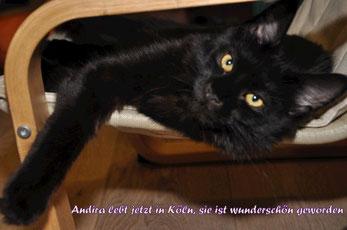 Andira fühlt sich sehr wohl