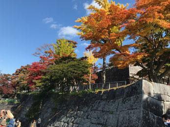 石垣が残る盛岡城址公園