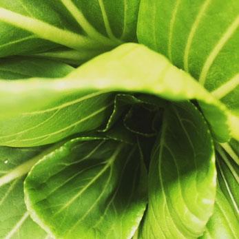 無農薬HMファームさんから採れたて!緑がキレイ!ありがと~~♪
