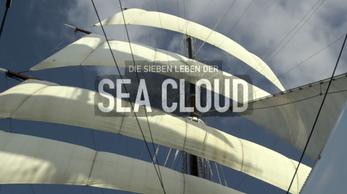 Die sieben Leben der Seacloud-arte-(Instrumentalist)