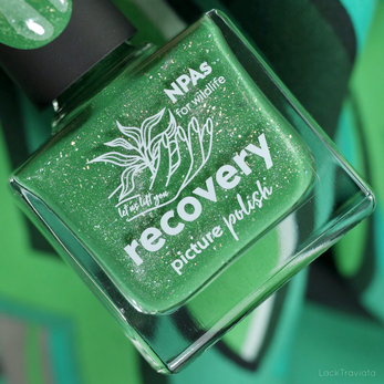 picture polish • recovery (NPAs for wildlife charity polish, spring 2020)