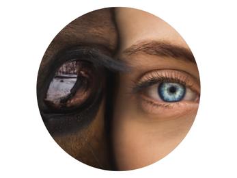 Osteopathie für Mensch und Pferd – Lisa Kullmann Hamburg