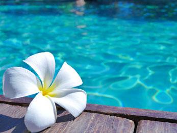 ハワイ アウラニディズニー日帰りコース 緑あふれるディズニーリゾート内をラグーンへ向かう