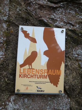 """Plakette """"Lebensraum Kirchturm"""" an der Bergkirche Niedergründau"""
