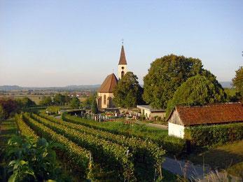 Die Bergkirche von Teningen-Nimburg am Rand des Kaiserstuhls