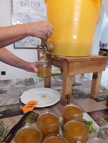 Der Honig wird ins Glas abgefüllt