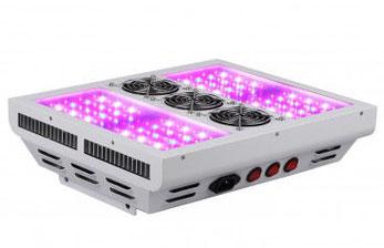 LED - Leuchtdioden