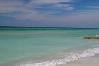 Anna Maria Island Coquina Beach Florida