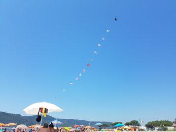 Bunte Drachen am strahlendblauen Himmel des Strandes