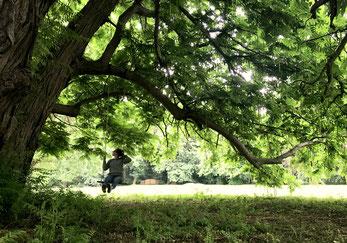 Mädchen auf der Schaukel unter dem Geäst unter dem Blätterdach eines alten Baumes im Park.