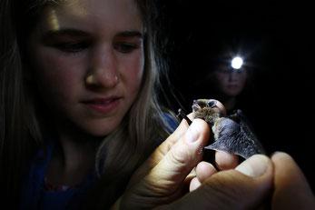 Junges Mädchen mit Fledermaus in der Hand