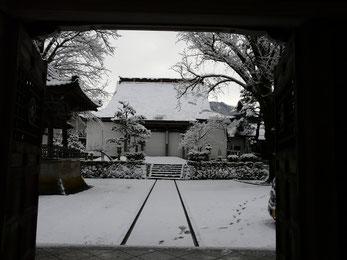 興行寺 境内の雪も少なく・・・   写真  大谷幸美