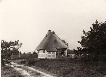 Jagdhaus von der Heideseite