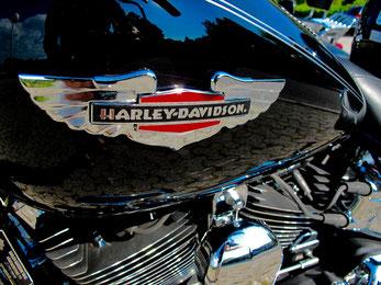 Harley Davidson, die Marke aller Motorrad-Marken