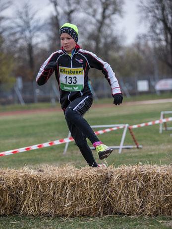 Lorenz Baumgartner - heuer in Österreich ungeschlagen in seiner Altersklasse im Triathlon, zeigt auch im Crosslauf sein Talent