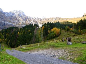 Blick zur Musenalp: Alles strahlt in den schönsten Herbstfarben.