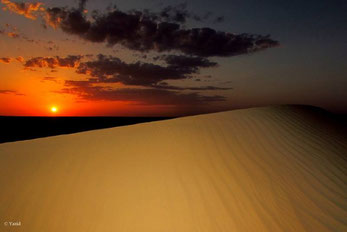 Puesta de sol en el Sáhara