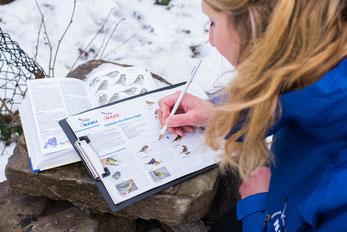 Junge Frau bei der Wintervogel-Zählung