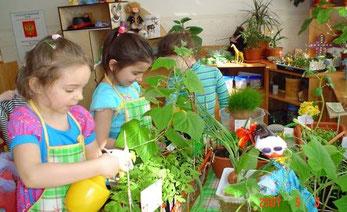 Модели для работы с детьми по экологическому воспитанию контрольная работа экономико математические модели
