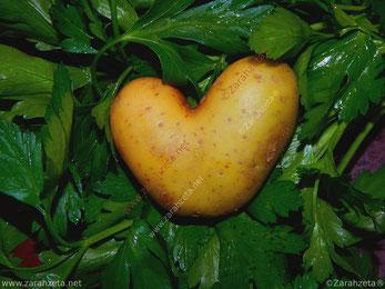 Kartoffel in Herzform auf frischer Petersilie