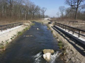 Bild: künstliches Fließgewässer bei Neustadt a.d. Donau (H. Wolf)