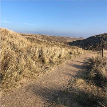 Weg durch die Dünen