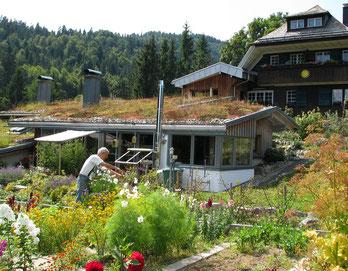 Öko-Urlaub im Schwarzwald, ohne WLAN und ohne DECT, ohne Funkbelastung