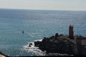 海は広いな大きいな!!相模湾ですね。