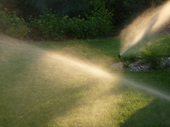 Gartenpflege in Hannover - eine unserer Bewässerungssysteme in Aktion