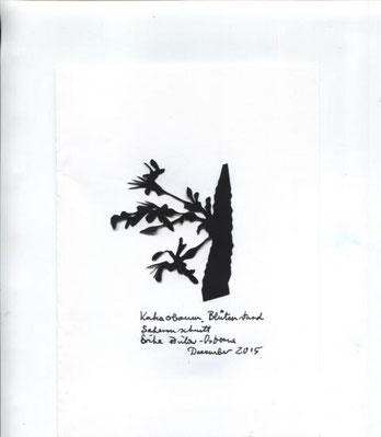 Blütenstand Kakabaum